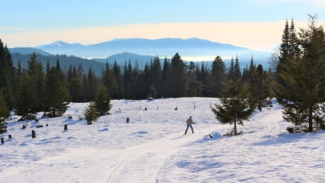 A wide open snowy view of mountains and snow covered fields with a man cross country skiing