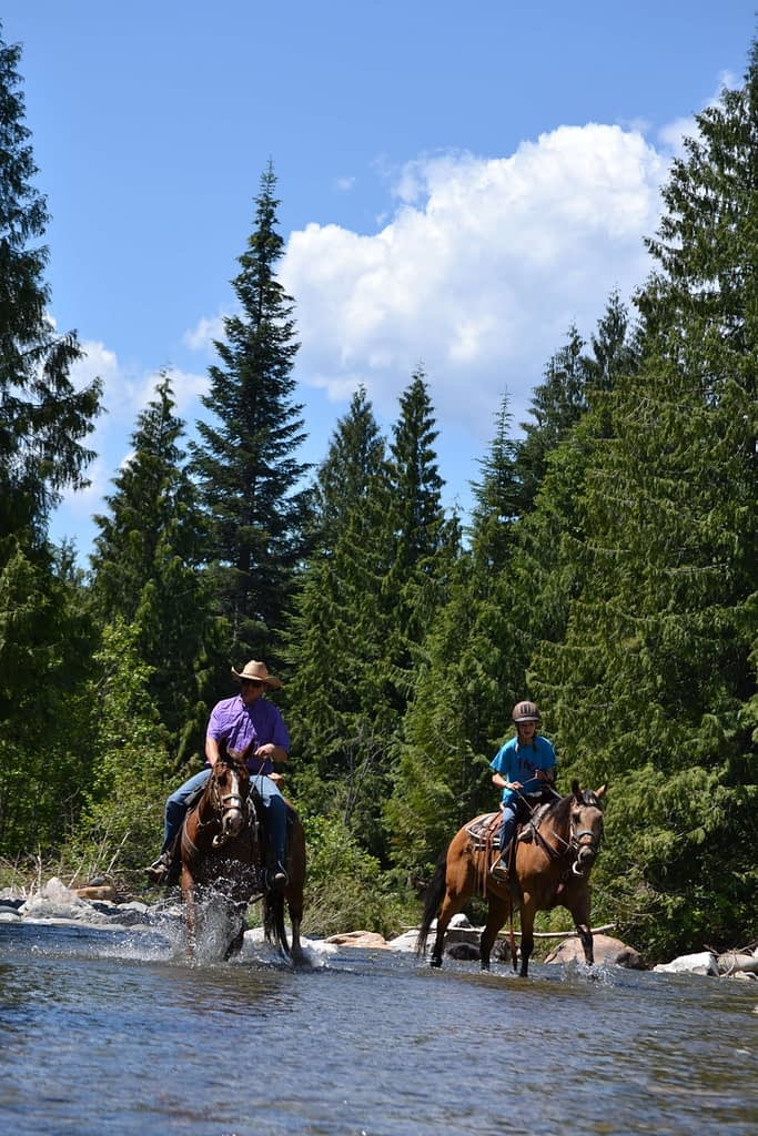 Two people on an adventure horseback riding across a river in the forest.