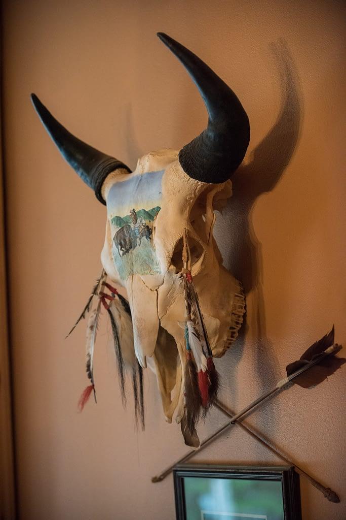 Nez Perce painted Buffalo skull with feathers