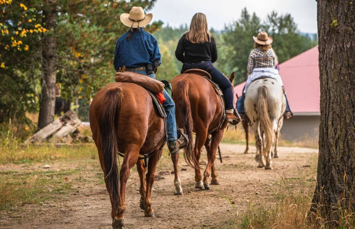 women riding horses back to the barn at Western Pleasure Guest Ranch