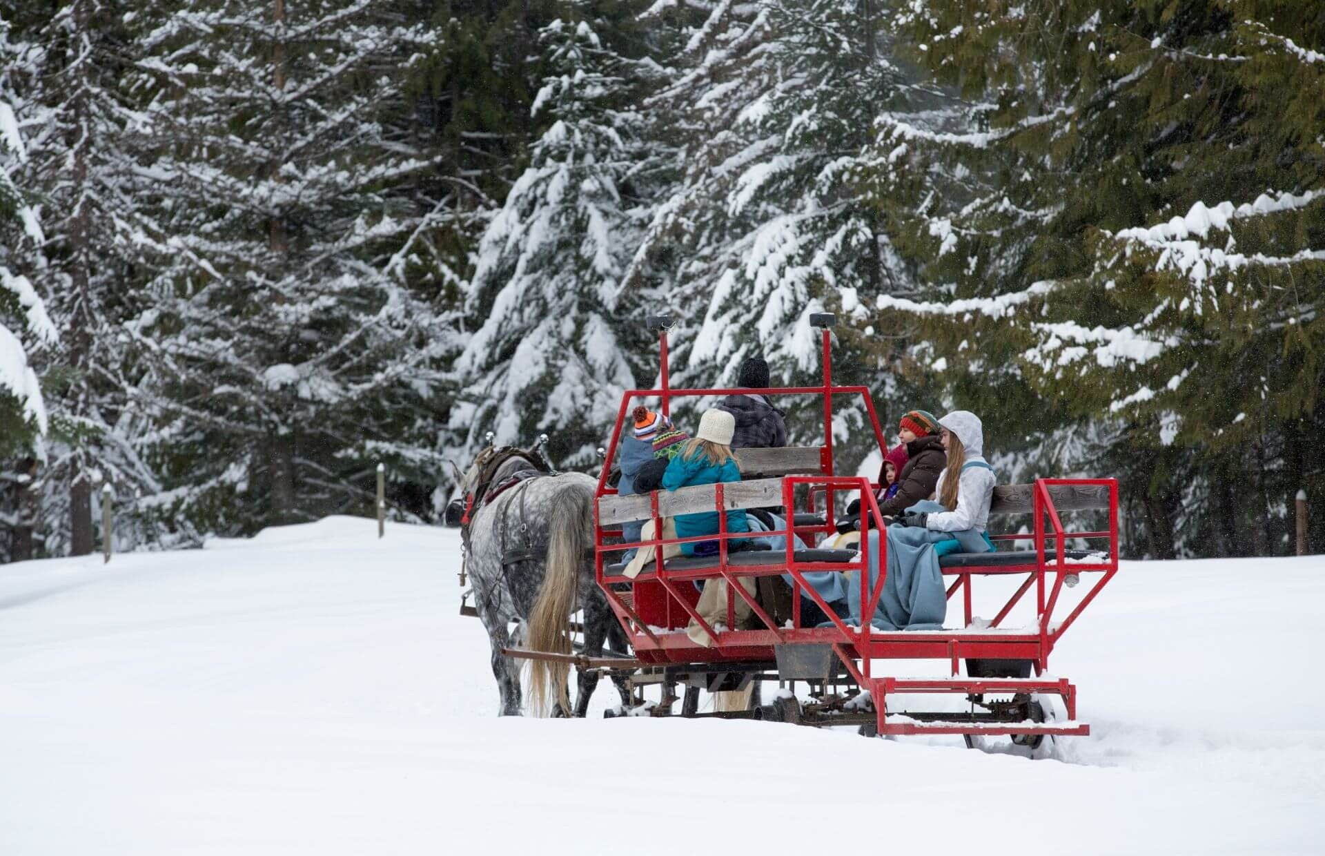 people on a red sleigh riding through the snow covered forest at Western Pleasure Guest Ranch in Idaho