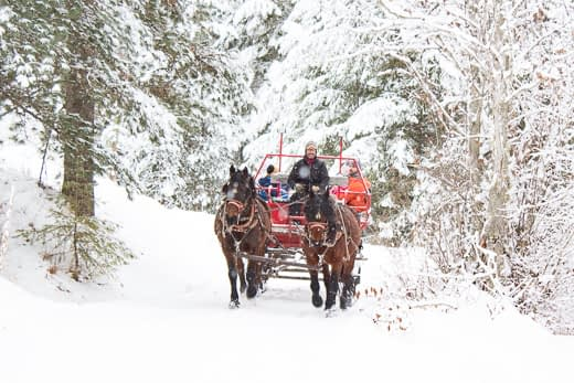 Western Pleasure Guest Ranch sleigh ride through the snow with red sleigh pulled by two draft horses