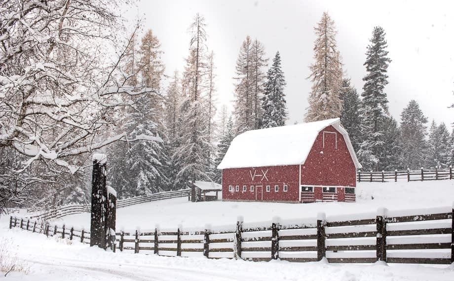 Winter Guest Ranch Big Red Barn and snow covered fence