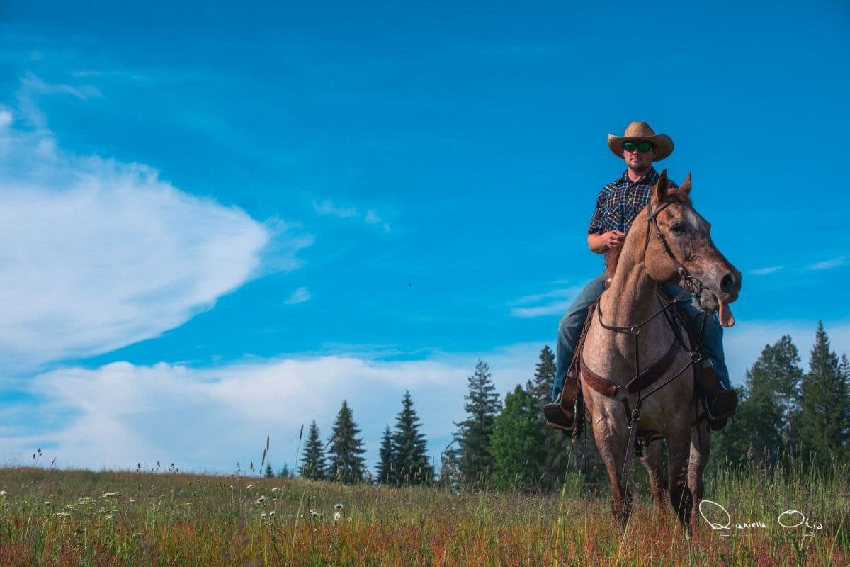 cowboy in a field sitting on a ranch horse with blue sky overhead