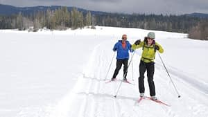 Skate skiing in the meadow
