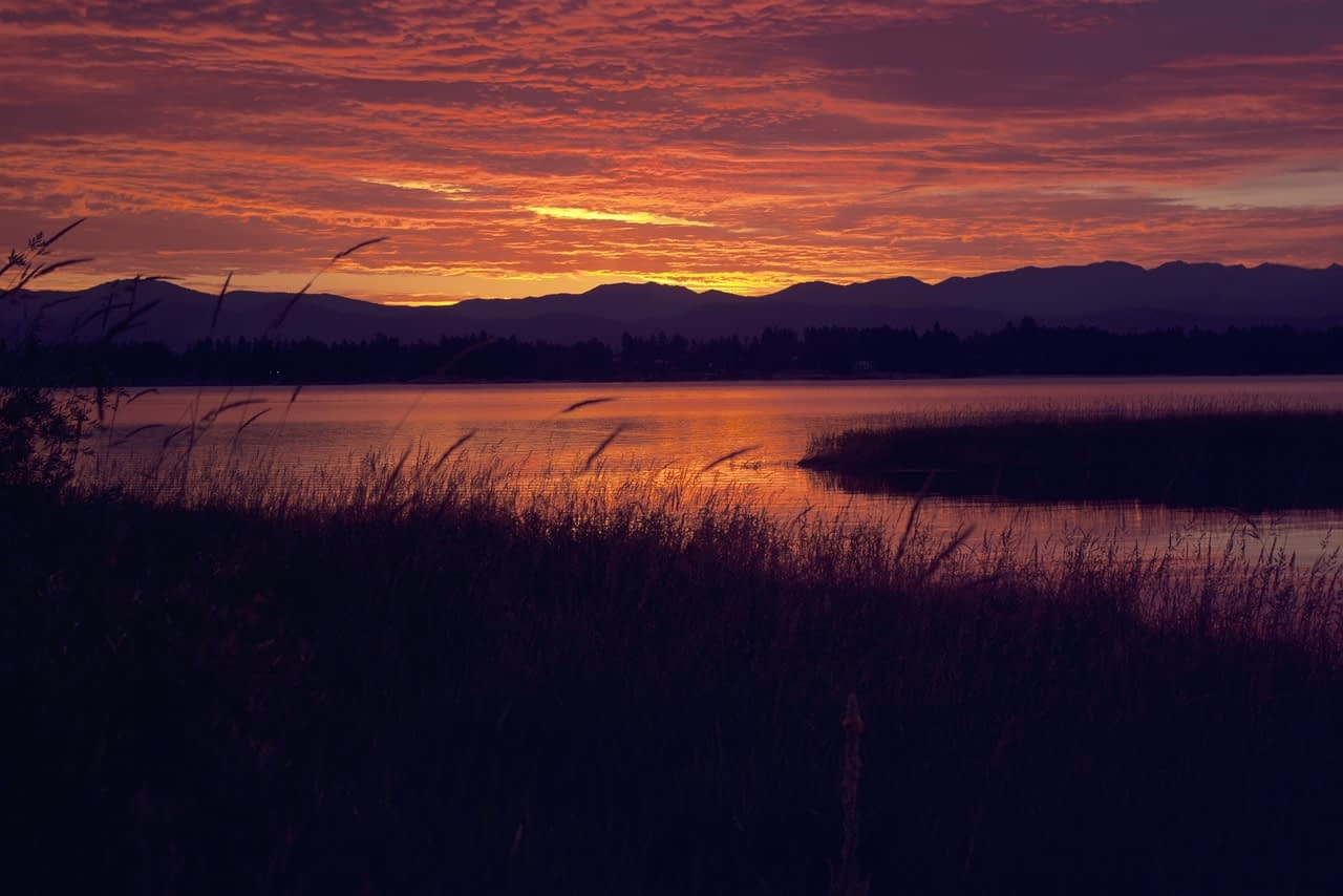 Sunset view of water, mountains and marsh grasses