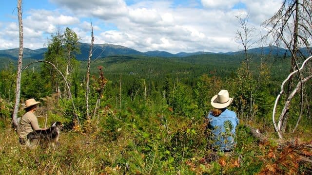 two women sitting in huckleberry brush Looking out on the mountains