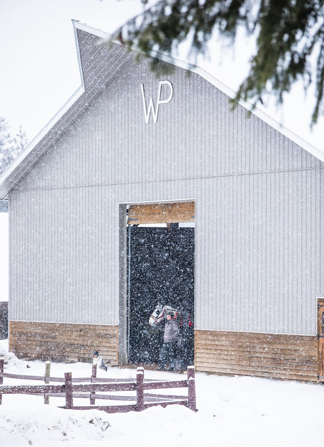 Barn in the snow storm with man and horse standing in doorway