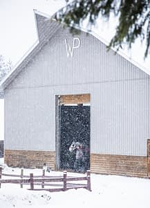 Barn in the snow storm
