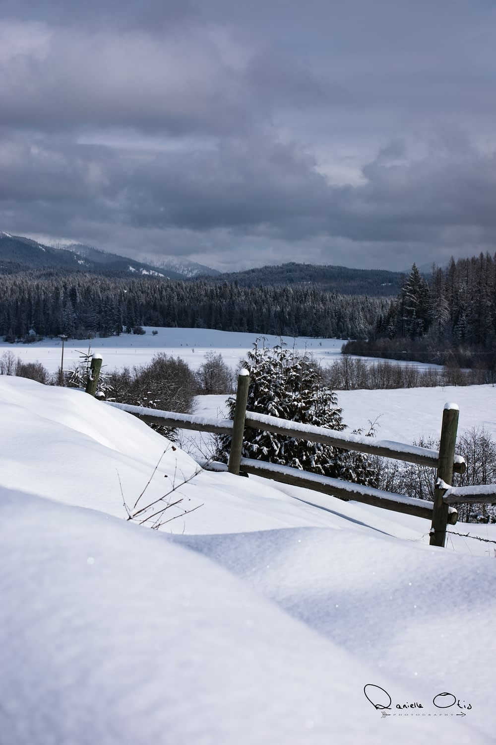 scenic snowy view of meadow and log fence