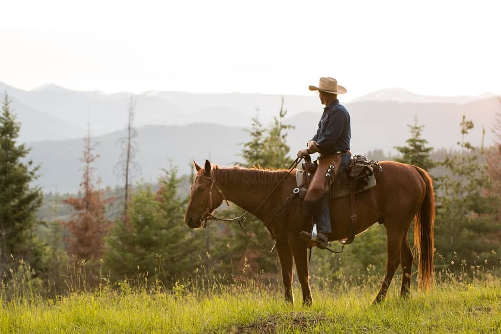Western Pleasure Guest Ranch cowboy riding a horse