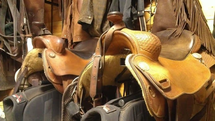 Close up of Saddles in a tack room