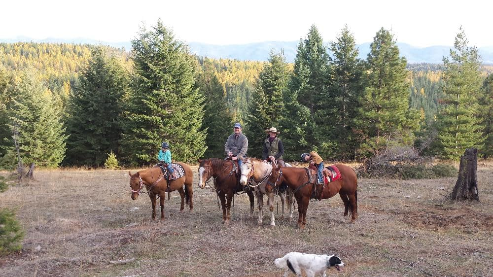 A horseback ride with the family